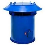 Вентилятор осевой крышный ВКОПв 30-160